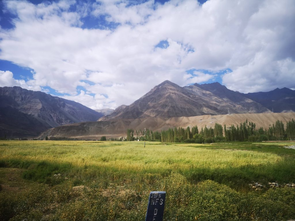 【2019印度自助】村莊裡的美好回憶,拉達克Aryan Valley Festival奇遇記 7